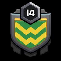 AVENGER badge