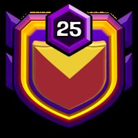 VIETNAM FREEDOM badge