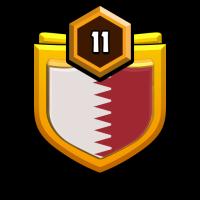 Việt Nam War badge