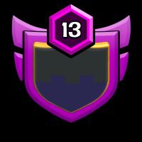 dragn fighter badge