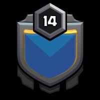 星河战队 badge