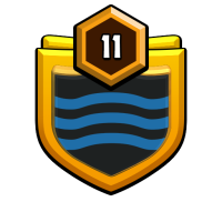 MCES~Co badge