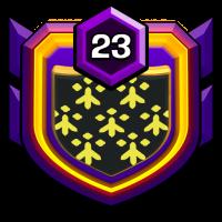 24cm badge