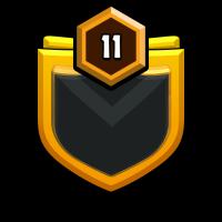 B D Warrior's ™ badge