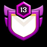 feicong badge
