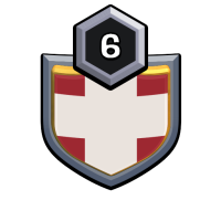 DANISH SOLDIERS badge