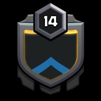 ⚔️TigerElite⚔️2 badge