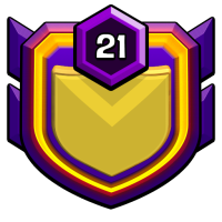 BD knights badge