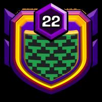 THE BIG GUNS badge