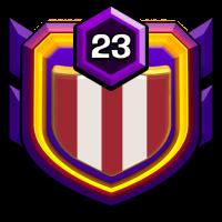 USA ALL-STARS badge