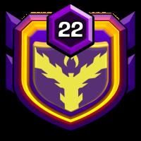 Wolverines badge
