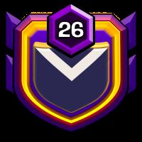 1ST.VIETNAM badge