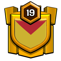 "TEAM EXPERT""7 badge"