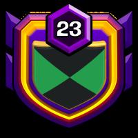 Merged Army S badge
