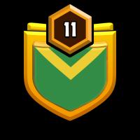 灿若繁星 badge