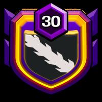 Avacs Castle badge