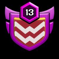 distric13 badge