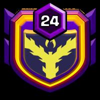 D7 Ninjas badge