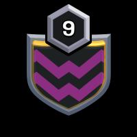 Synthesis II badge