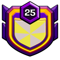VieT cALi badge