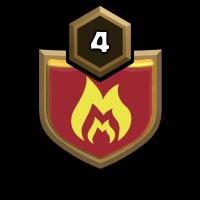 U.S.A BIRDZ badge