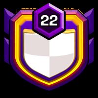 BraveVision badge
